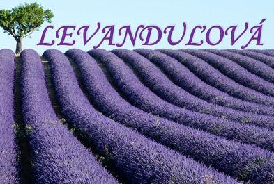 pozvanka Levandulova